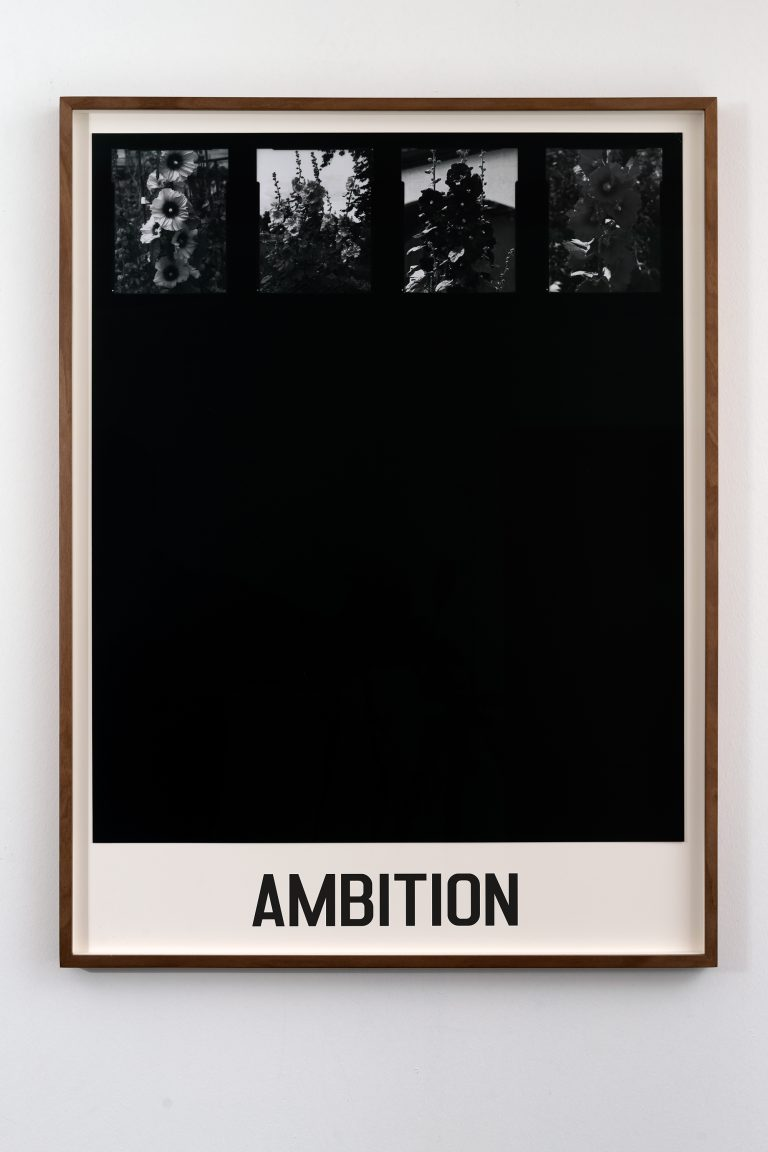 ambition20x30
