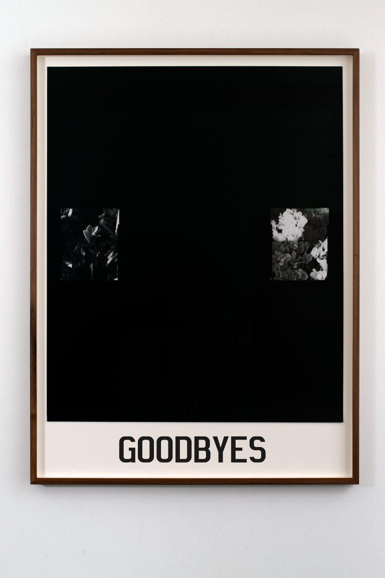 goodbyes20x30