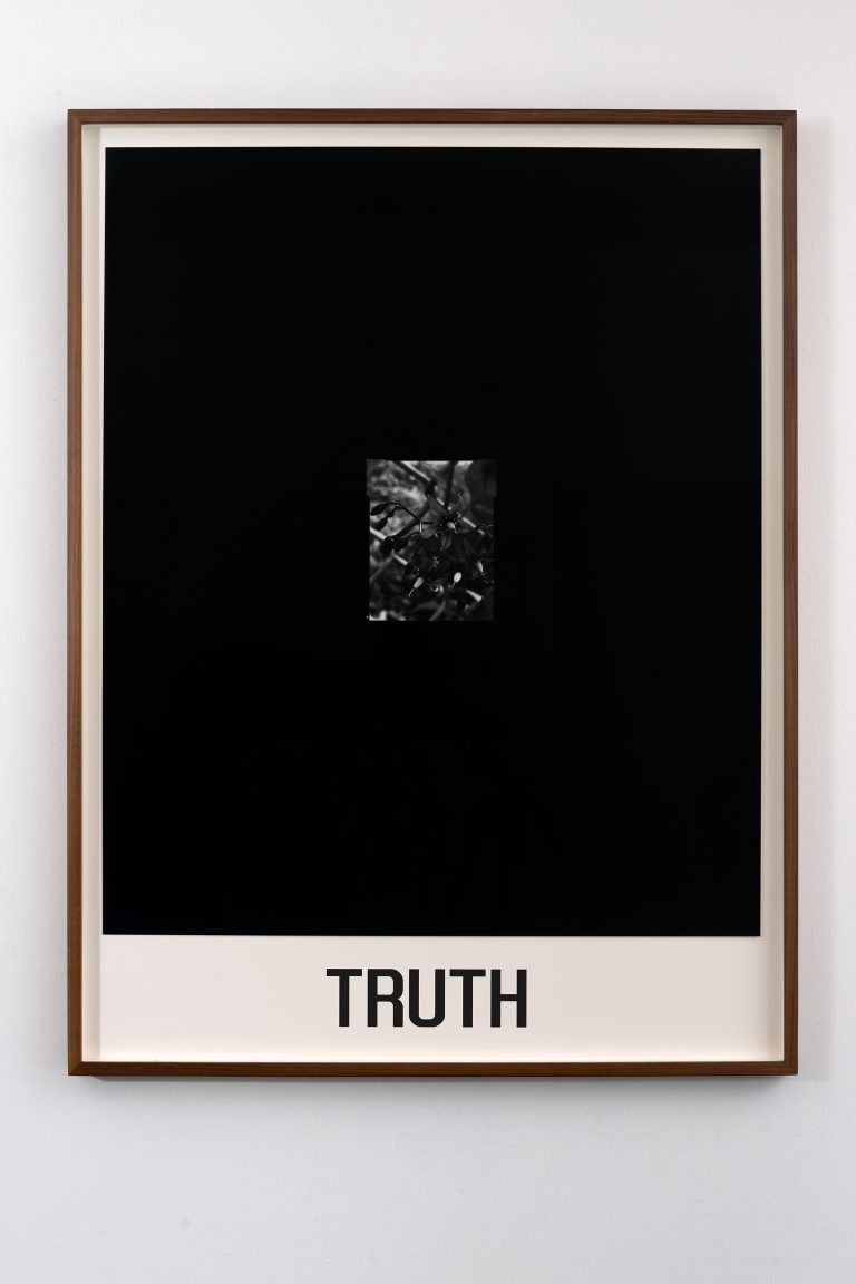 truth20x30